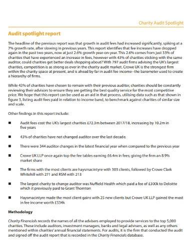 charity audit report template