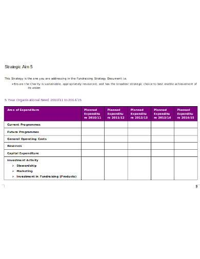 charity fundraising strategy plan