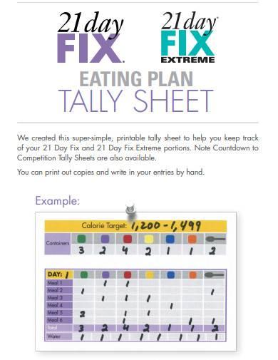 day fix tally sheet template