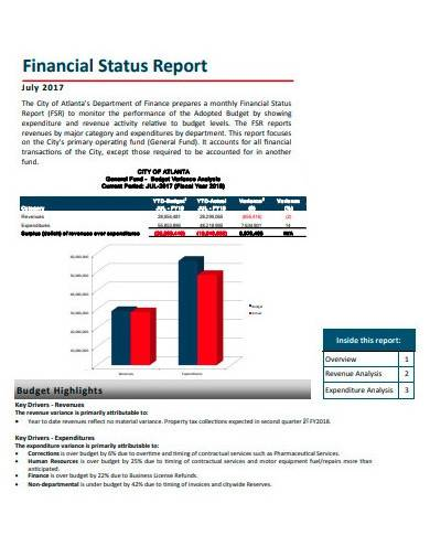 format of financial status report