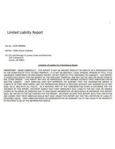 limited liability report template