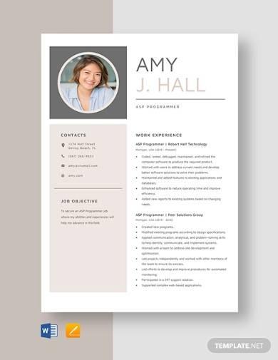 asp programmer resume template