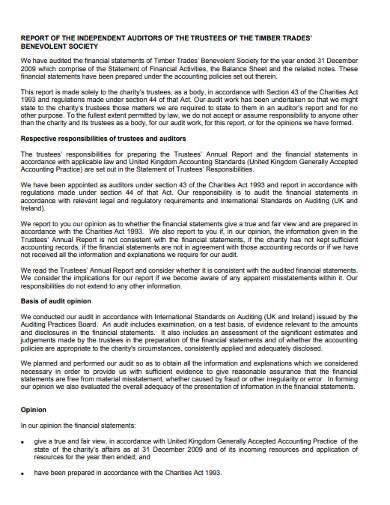 charity activities audit report