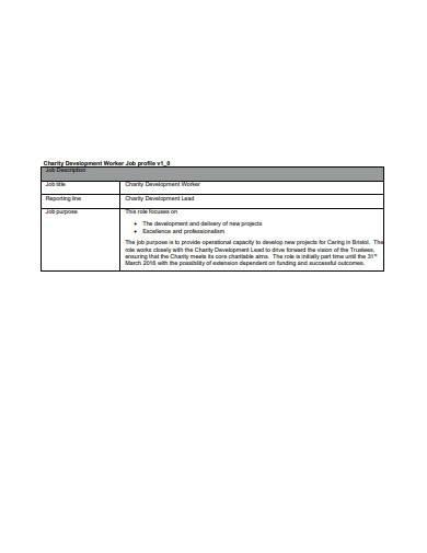 charity development profile template