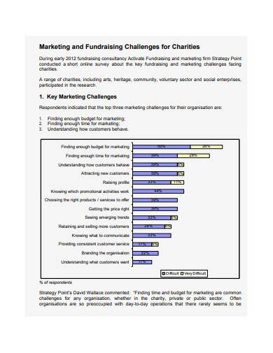 charity marketing and fundraising plan