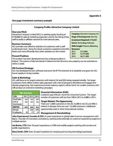 company investment summary sample