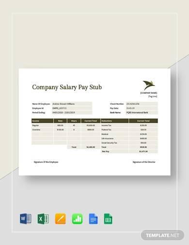 company salary pay stub