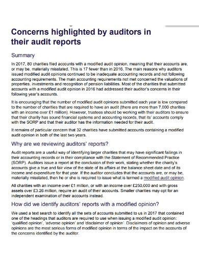 format of charity audit report
