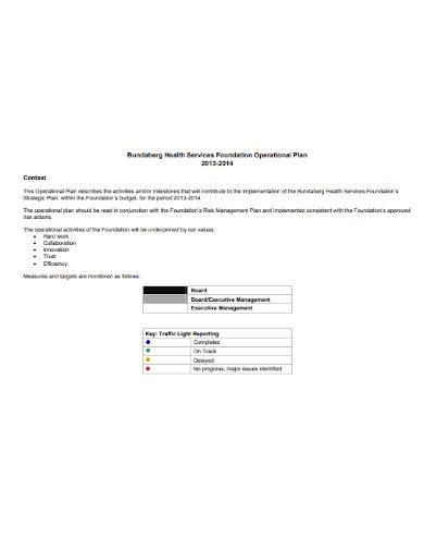 foundation operational plan template