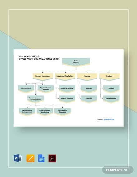 free human resources development organizational chart template