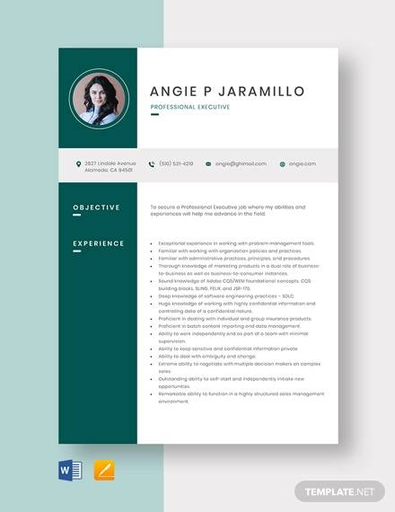 free 13  sample hr executive resume templates in ms word