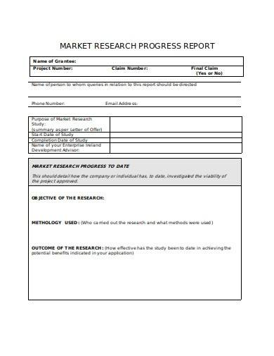 market research progress report