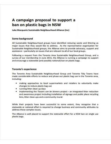 sample campaign proposal