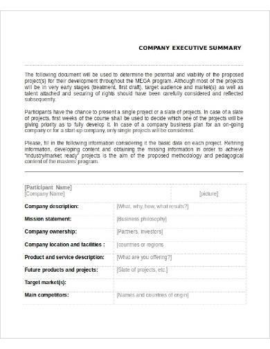 sample company executive summary