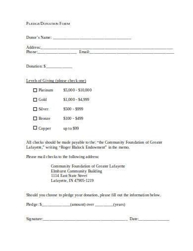 sample donation pledge form
