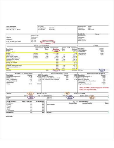 sample salary pay stub