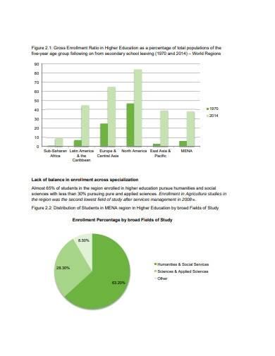 scientific research program report