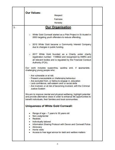 voluntary organisation business plan
