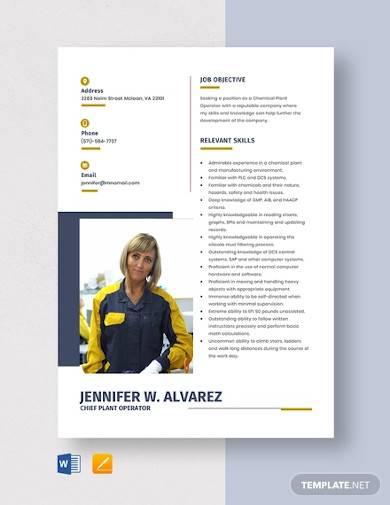 chief plant operator resume template