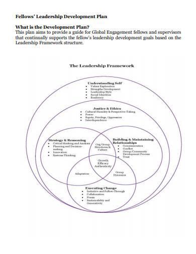 fellows' leadership development plan