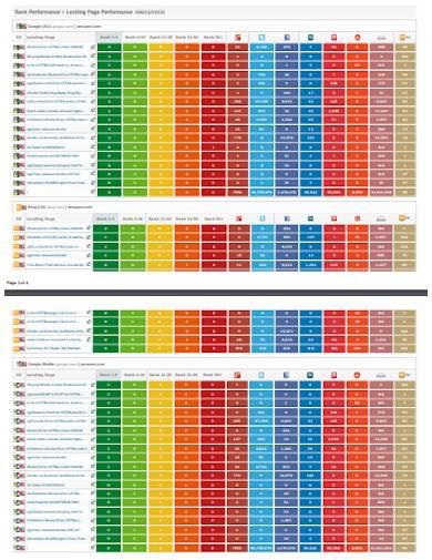 rank process seo marketing report