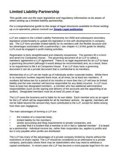 sample limited liability partnership