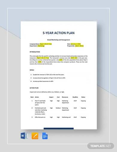 5 year action plan template