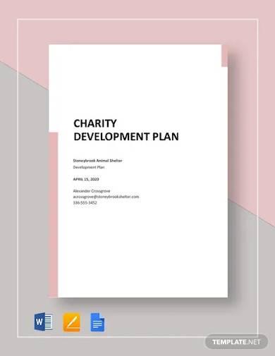 charity development plan template