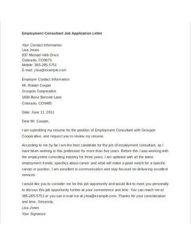 employment consultant job application letter