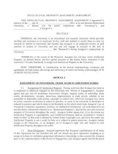 intellectual property assignment agreement