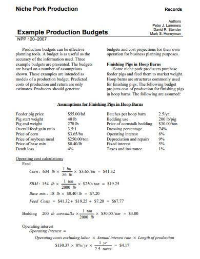 production budget template