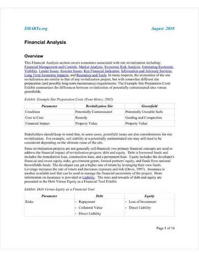 sample financial analysis overview