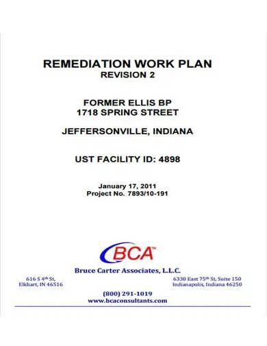 sample remediation work plan
