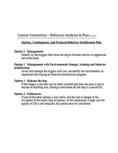 behavior modification analysis and plan