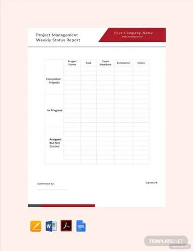 free project management weekly status report template