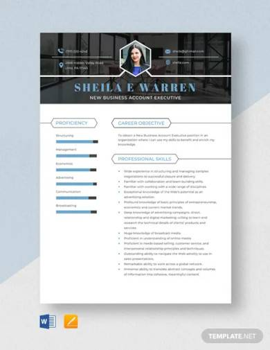 new business account executive resume template
