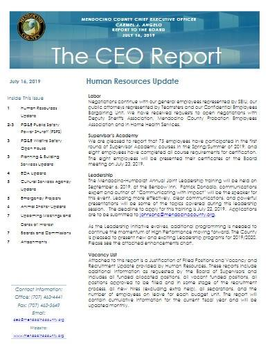 professional ceo report
