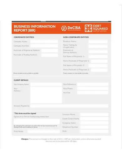 sample business information report