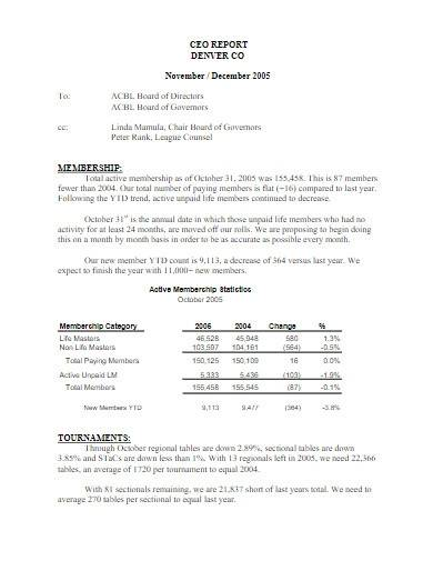 sample ceo report format