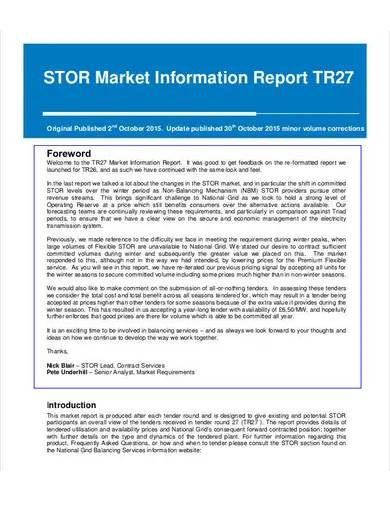 sample market information report