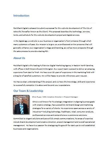 standard digital marketing proposal