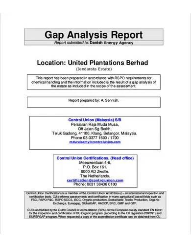 gap analysis audit report