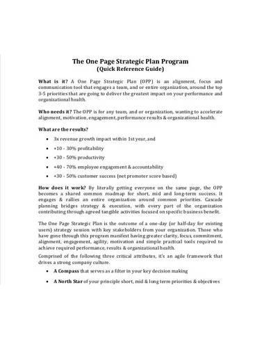 one page strategic plan program