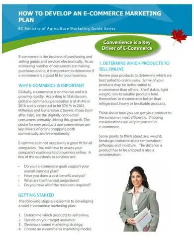 professional e commerce marketing plan