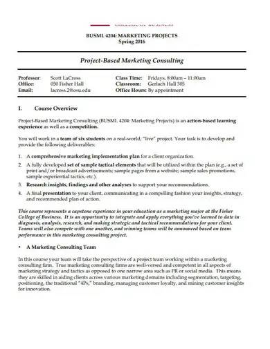 project based marketing consulting plan
