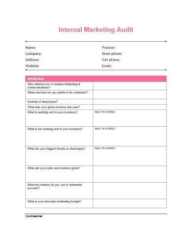 sample internal marketing audit
