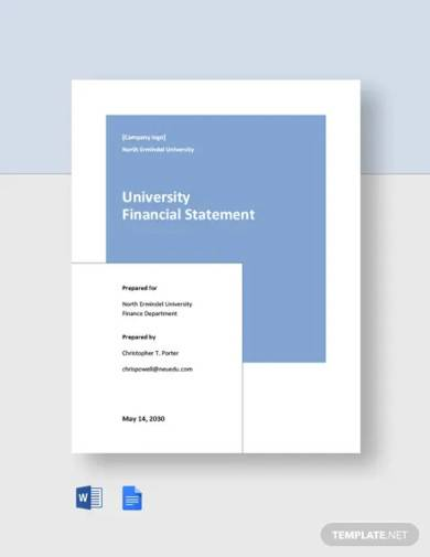 university financial statement template