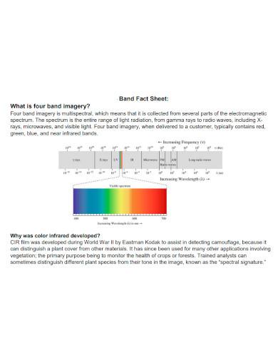 band fact sheet sample