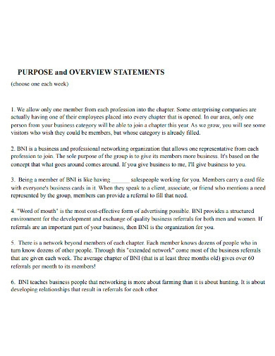 business purpose and overview statement