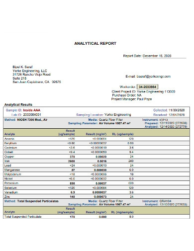 client project analytical report